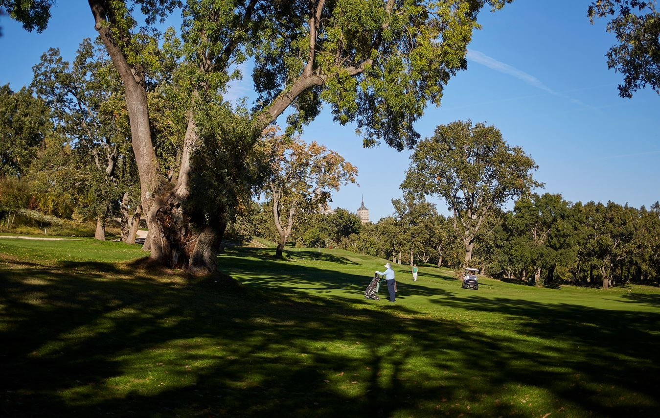 El golf, un deporte con gestores altamente cualificados