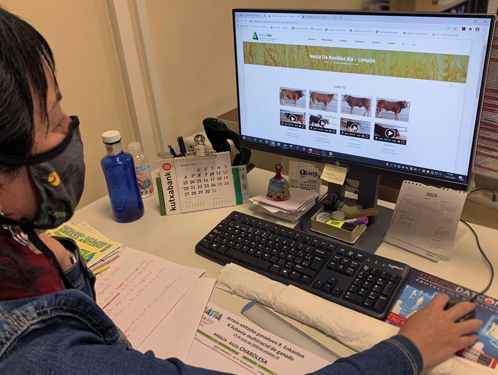 LORRA crea la primera plataforma de subasta online de ganado