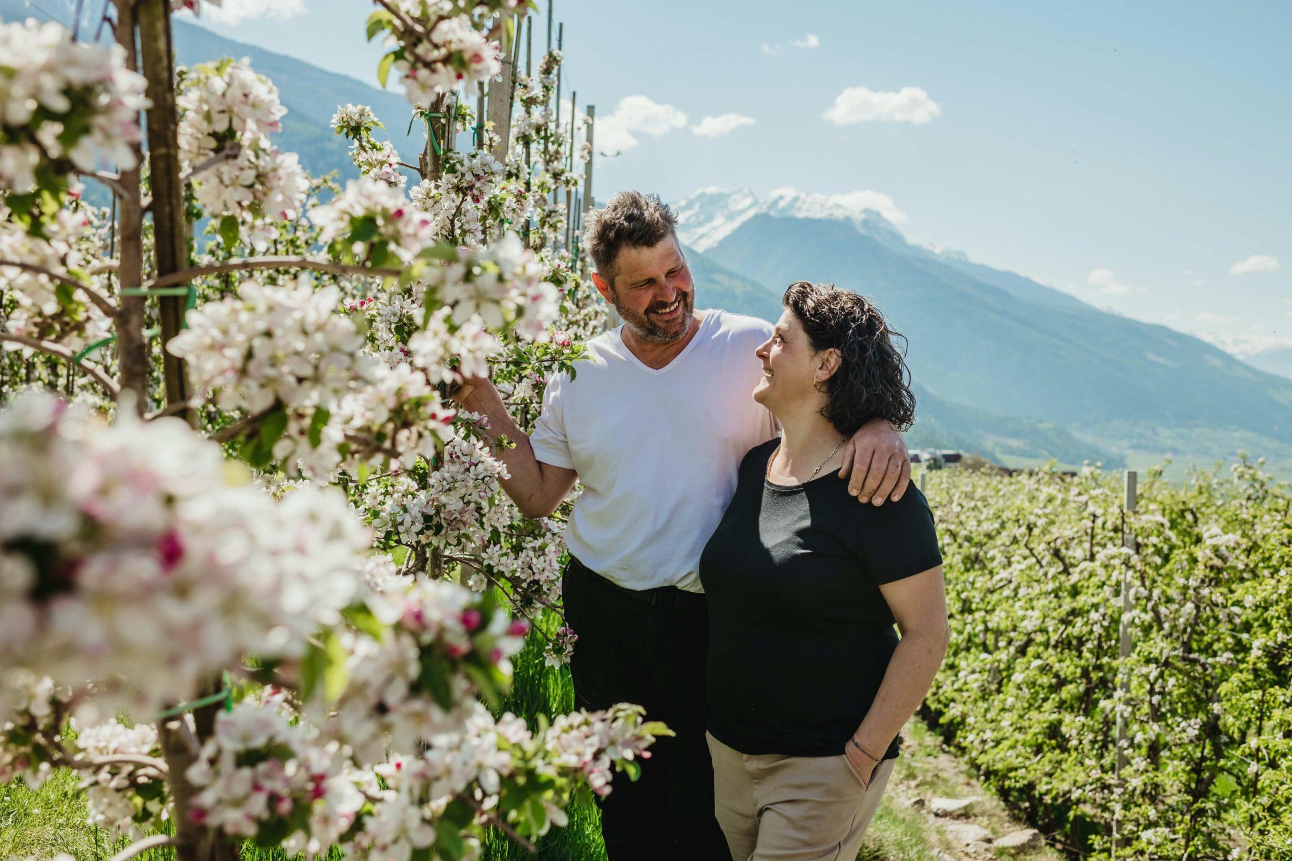 La floración de los manzanos de Val Venosta: un espectáculo de naturaleza