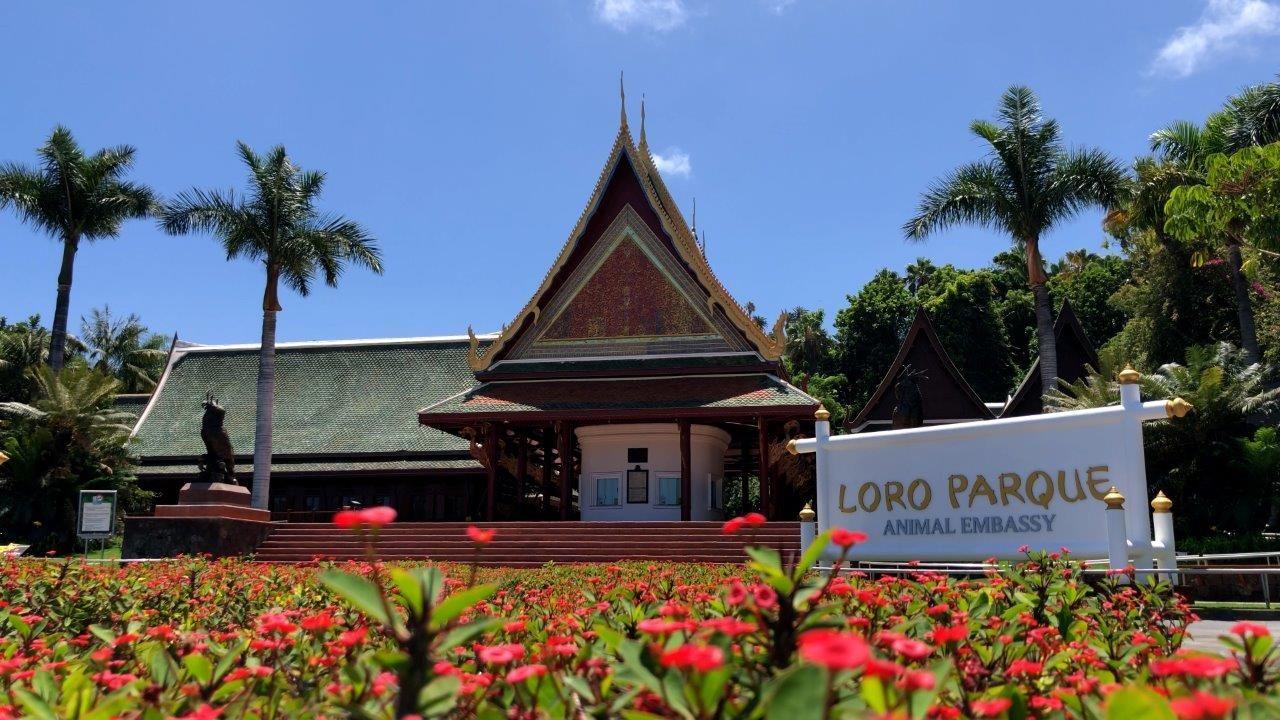 Loro Parque anuncia su reapertura tras más de 13 meses de cierre