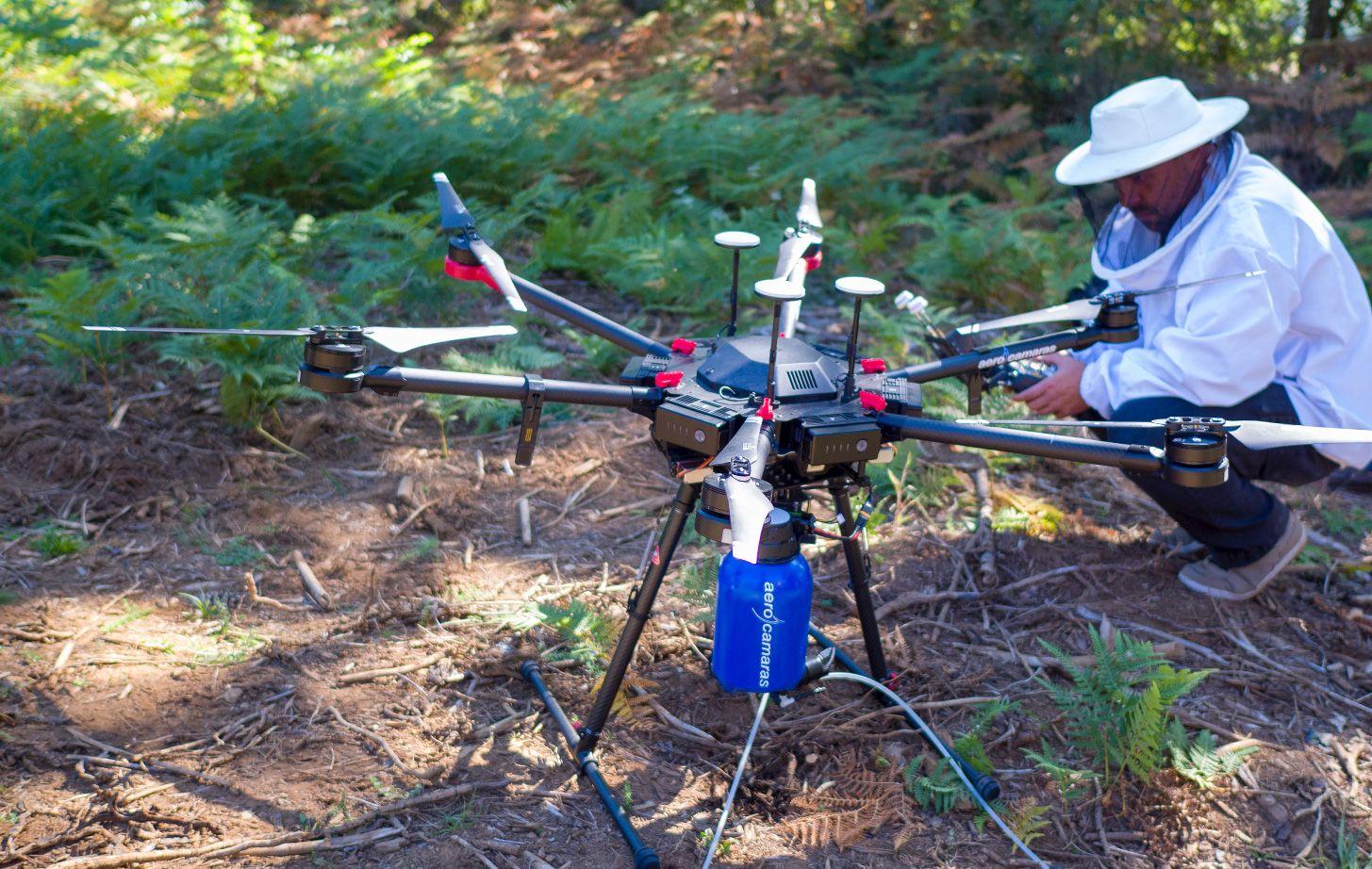 Drone Velutina, el sistema más rápido, seguro y eficaz contra la avispa asiática