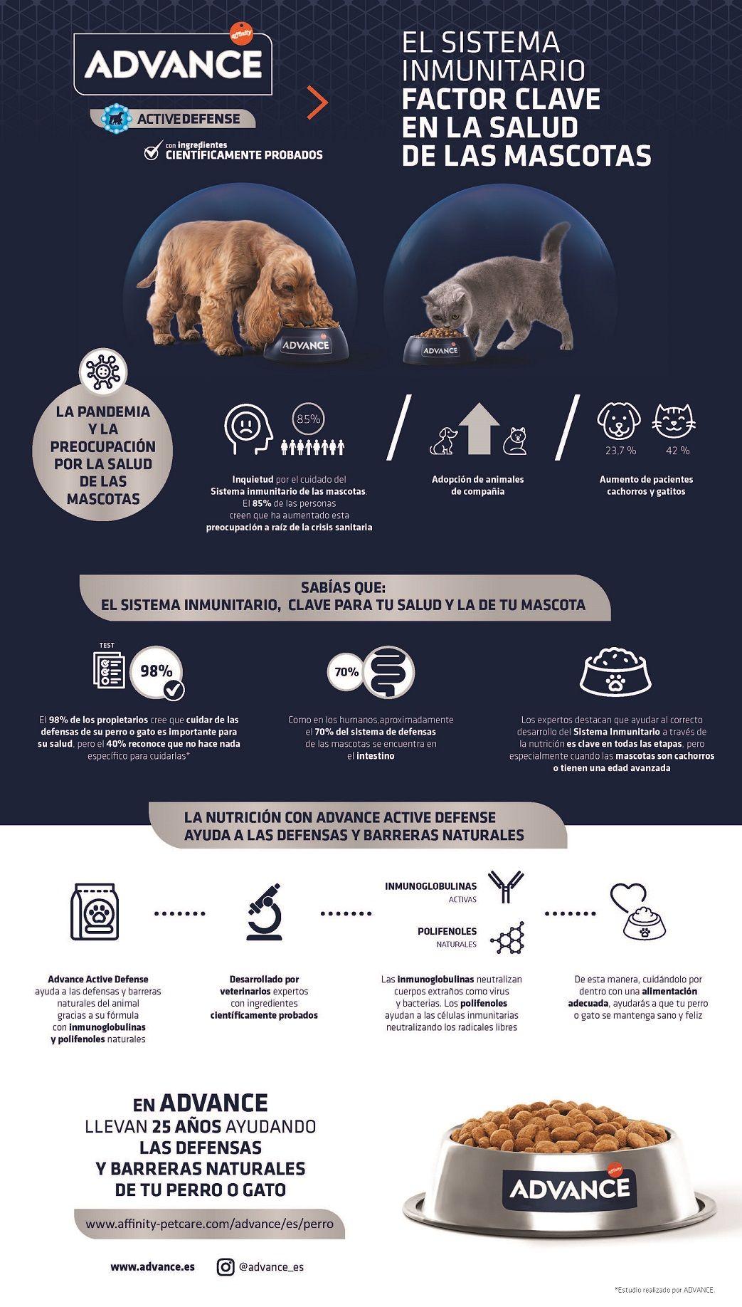 El sistema inmunitario, factor clave en la salud de las mascotas