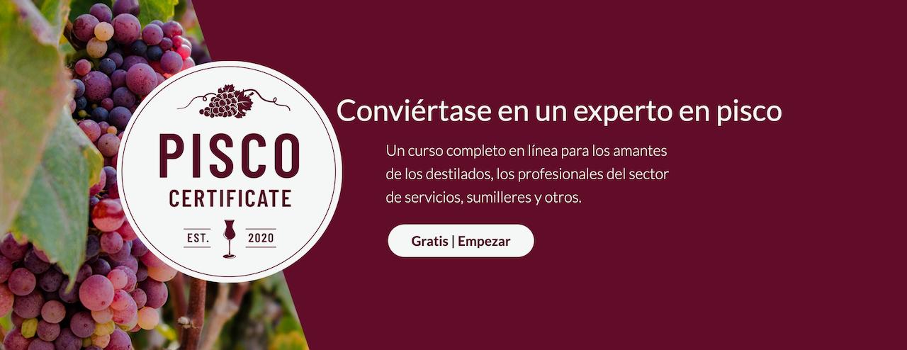 PiscoLogía anuncia lanzamiento de Curso Certificado de Pisco en castellano