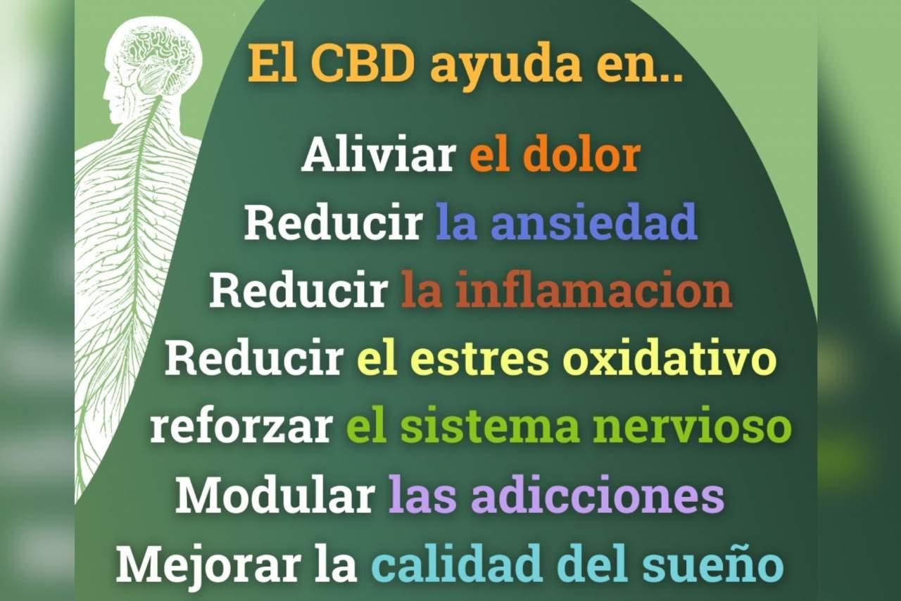 Spirit Natura: cannabis (CBD) ecológico y proyecto medioambiental