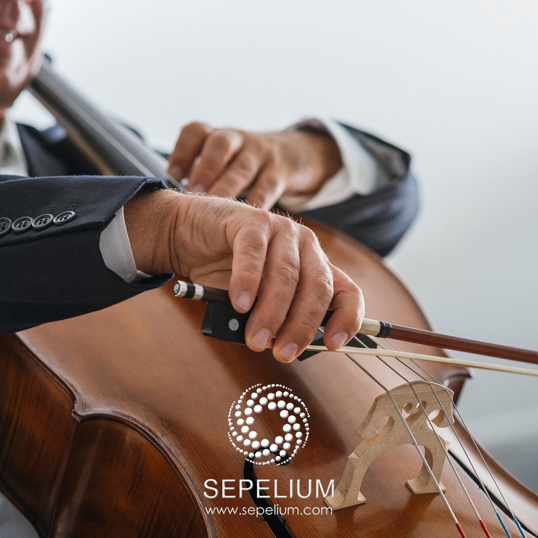 Sepelium ofrece alternativas personalizadas para funerales y despedidas