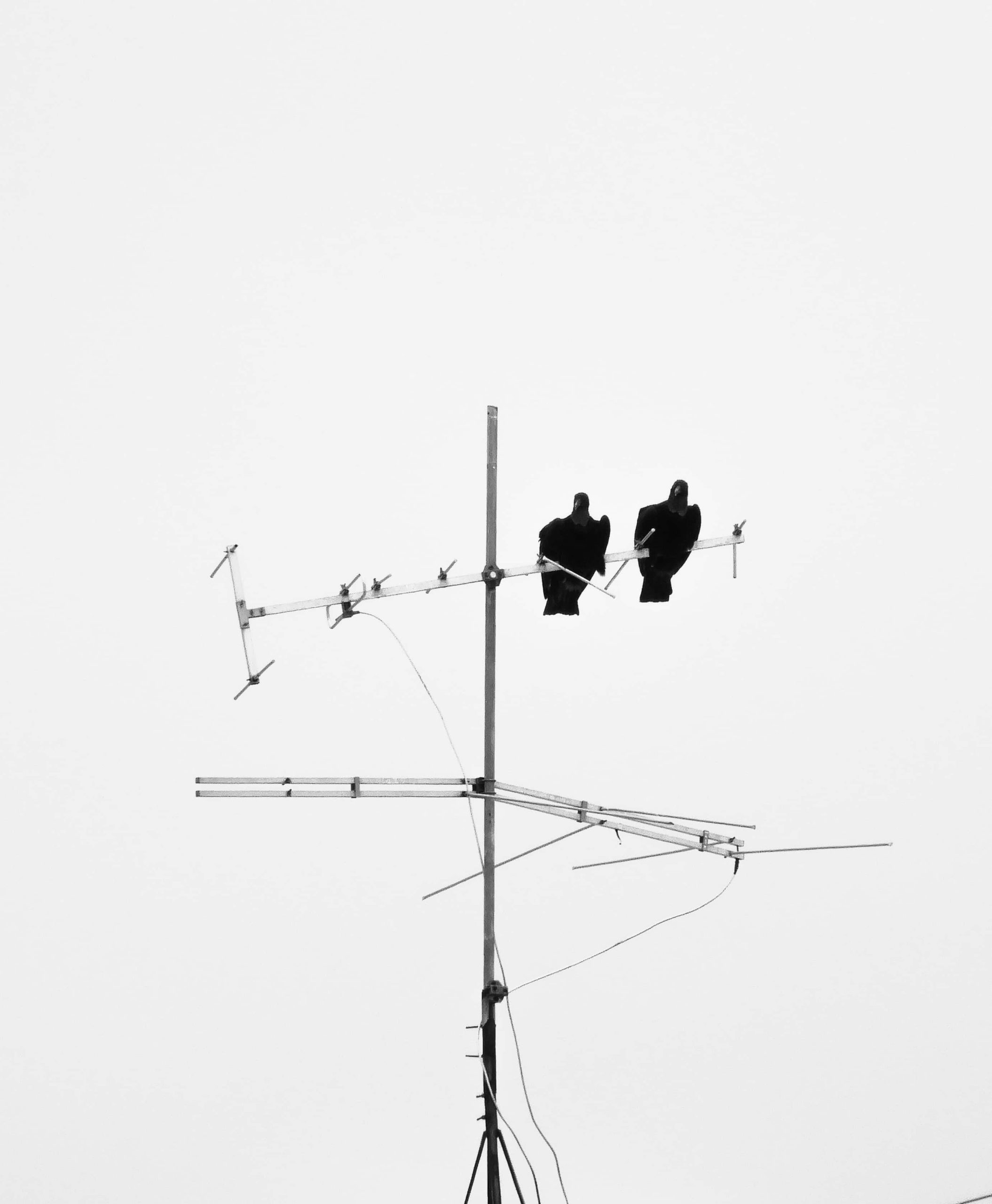 ¿Cómo funciona la antena del televisor? por antenas.me