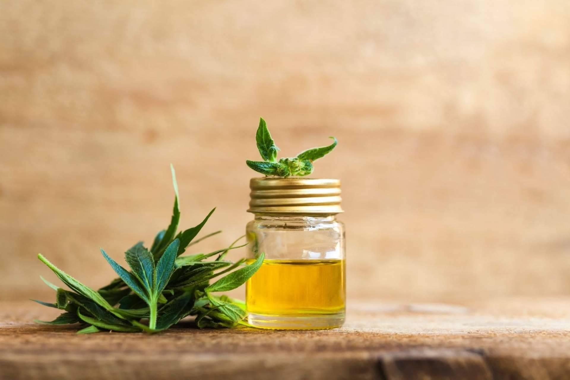 Premium Legal Hemp: ¿El aceite CBD para tratar molestias musculares funciona?