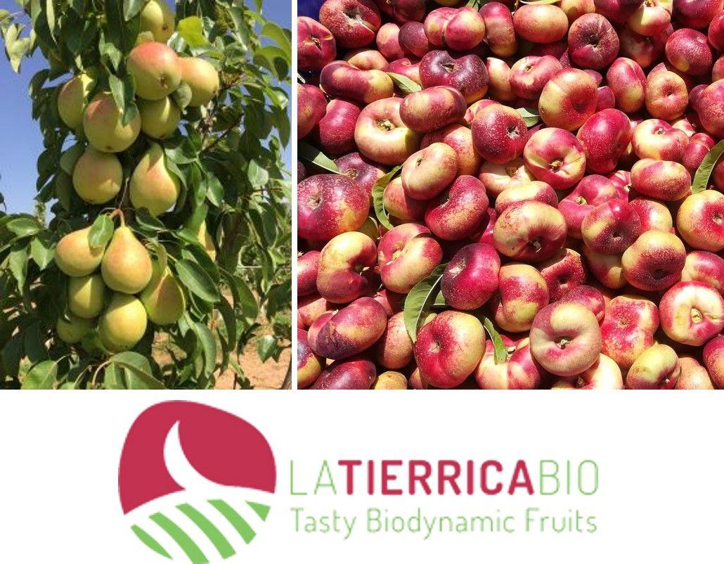 La consultoria CEDEC col·labora amb FRUTAS GARCÍA VARGAS i la seva marca de productes ecològics LA TIERRICA BIO