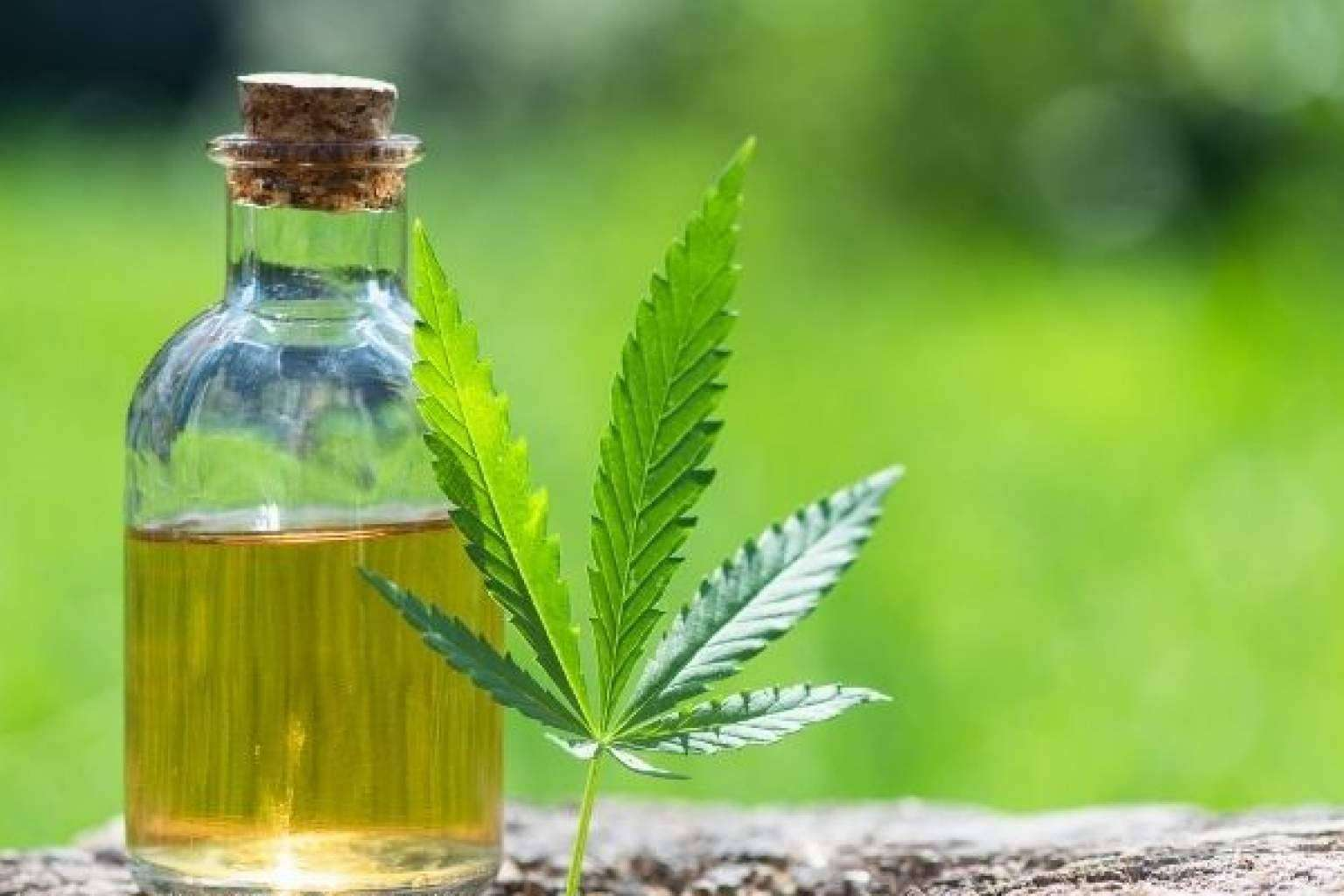 CBD Organics cuenta con una amplia gama de aceite CBD